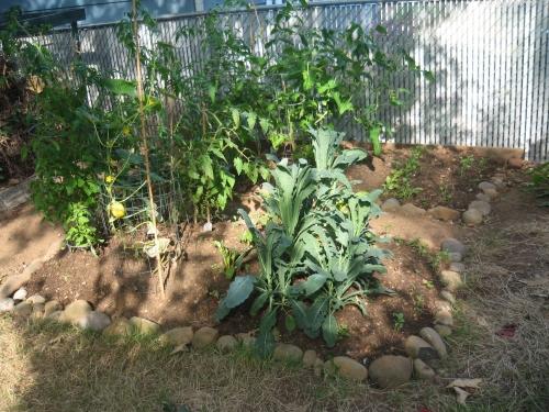 Gardenafter