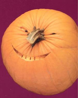 Pumpkin_face